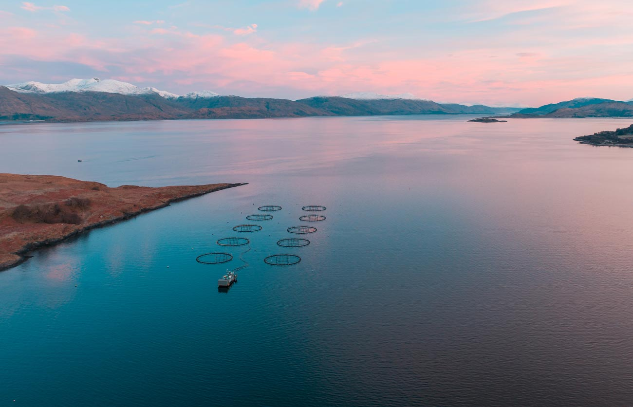 a scottish fishery at sunrise drone photograph