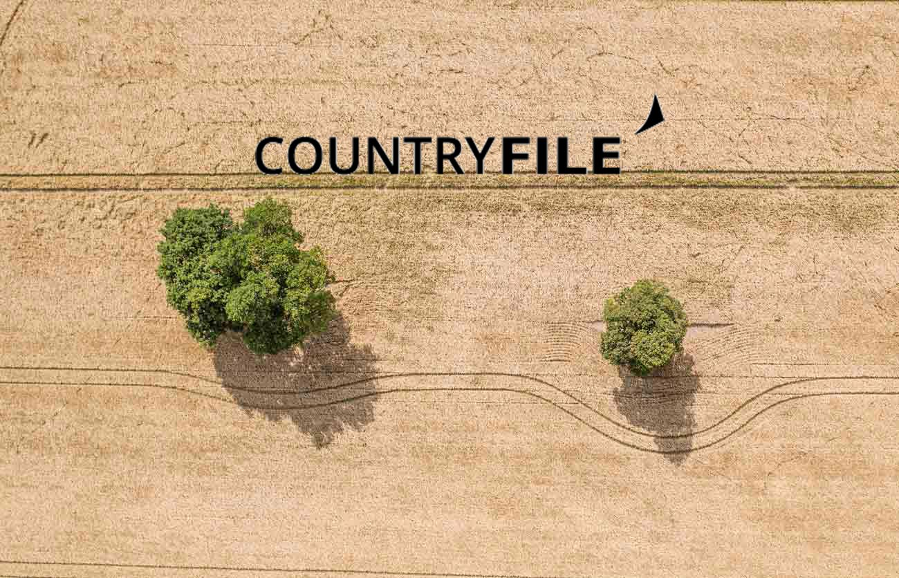 farmland drone aerial photography