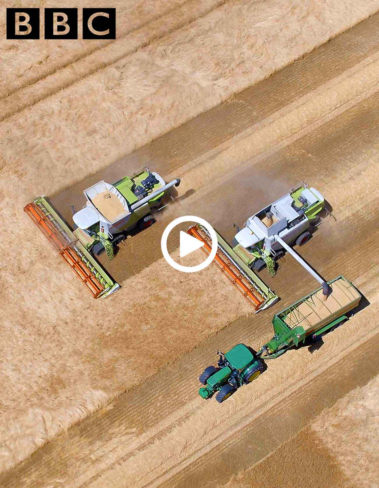drone photo combine harvesters working in a field